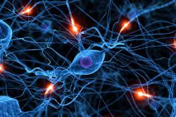 Проблемы с нервной системой - причина боли в спине