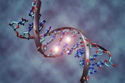Генетическая предрасположенность - причина развития вдовьего горба