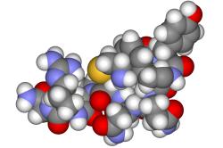 Гормональный сбой - причина развития шейного остеохондроза