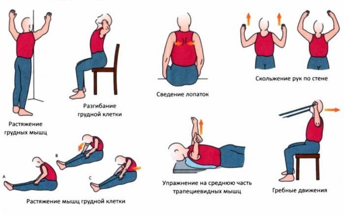 Упражнения с картинками при грыже позвоночника 4